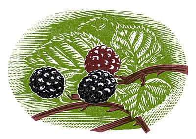 Blackberries, Woodcut Poster