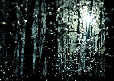 Blue Burns The Twilight Poster
