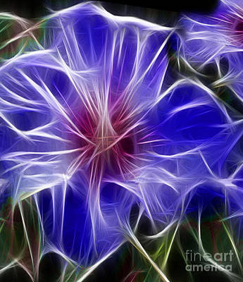 Blue Hibiscus Fractal Panel 3 Poster