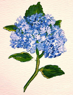 Blue Hydrangea Poster by Leea Baltes