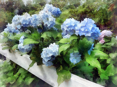 Blue Hydrangea On White Fence Poster by Susan Savad