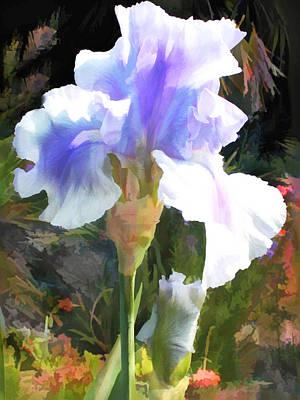 Blue Iris Poster by Elaine Plesser