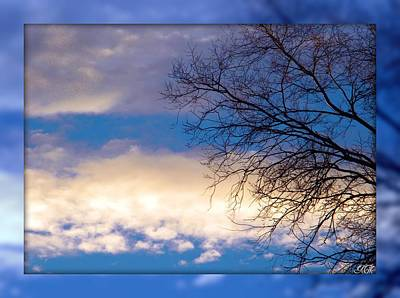 Poster featuring the photograph Blue Sky by Michelle Frizzell-Thompson