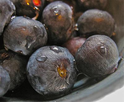 Blueberries  Poster by Bill Owen