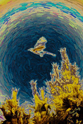 Bluejay Gone Wild Poster by Trish Tritz