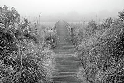 Boardwalk In Quogue Wildlife Preserve Poster