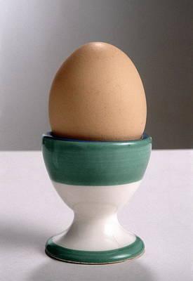 Boiled Egg Poster