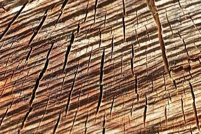 Bois Coupé (fr) - Cut Wood (en/us) Poster by (c) Nicolas-Baptiste Beliard / www.beliard.net