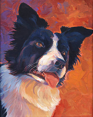 Border Collie Poster by Shawn Shea