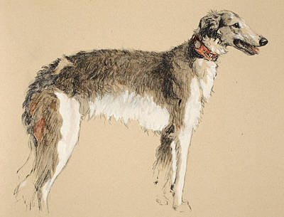 Borzoi Poster by Cecil Charles Windsor Aldin