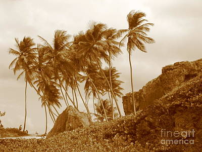 Bottom Bay Barbados Poster