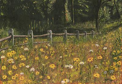boundary fence Swan Lake NY Poster