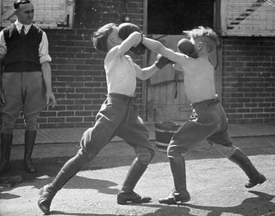 Boxing Boys Poster by Felix Man