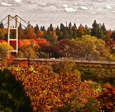 Bridge Poster by Bill Owen