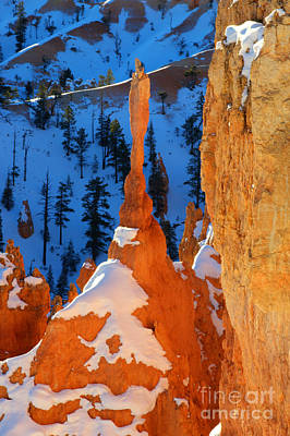 Bryce Canyon Winter 10 Poster by Bob Christopher