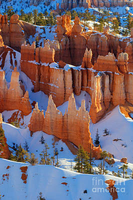 Bryce Canyon Winter 12 Poster by Bob Christopher