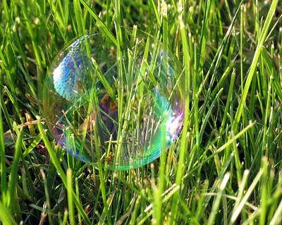 Poster featuring the photograph Bubble In The Grass by Darleen Stry