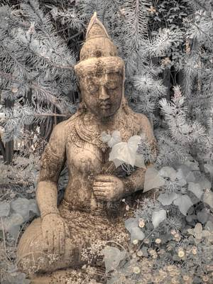 Buddha Nature Poster