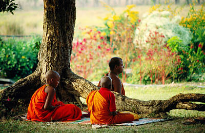 Buddhist Monks At Meditation Under Tree Poster by Lindsay Brown