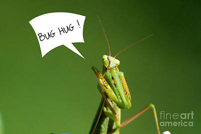 Bug Hug Poster by Lila Fisher-Wenzel