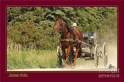 Buggy Ride Poster by Gary Scott