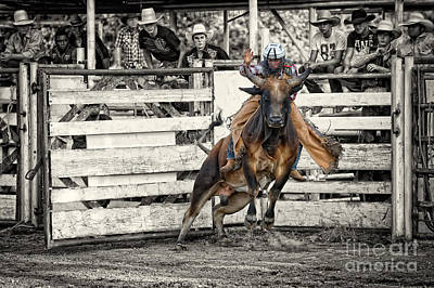 Bull Riding - 8 Seconds At A Texas Rodeo Poster by Andre Babiak