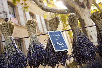 Bunches Of Lavender Hang From A Pole Poster