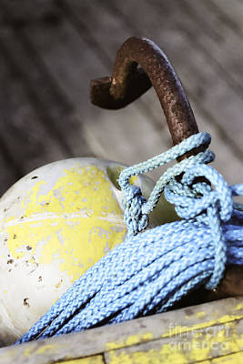 Poster featuring the photograph Buoy Rope And Anchor by Agnieszka Kubica