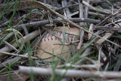 Poster featuring the photograph Buried Baseball by Stephanie Nuttall
