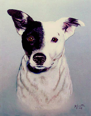 Butch The Smooth Fox Terrier Original Painting Forsale Poster by Bob and Nadine Johnston