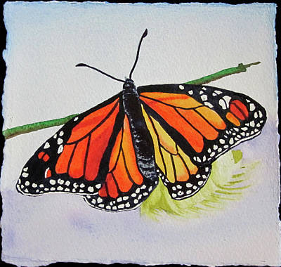 Poster featuring the painting Butterfly by Teresa Beyer