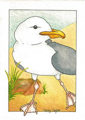 C. Gull Poster