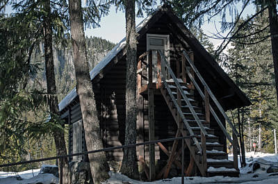 Poster featuring the photograph Cabin Get Away by Tikvah's Hope