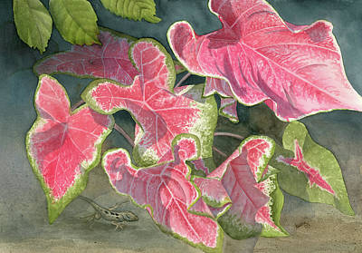 Caladiums With Chameleon Poster