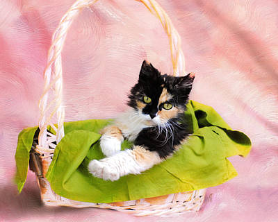 Calico Kitty In Basket Poster by Jai Johnson