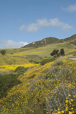 California Hillside View I Poster