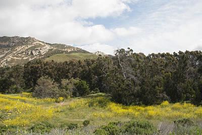California Hillside View IIi Poster by Kathleen Grace