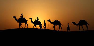 Camel Men Poster by Dawn Nicoli