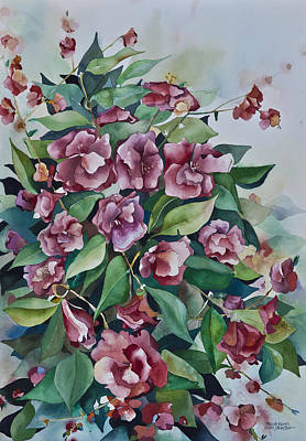 Camellias  Poster by Daniel Boone