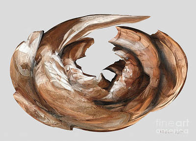 Cape Driftwood One Poster by David Klaboe