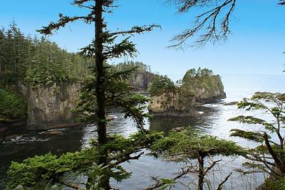 Cape Flattery Poster by Christy Leigh
