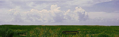 Poster featuring the photograph Cape Marsh by Michael Friedman