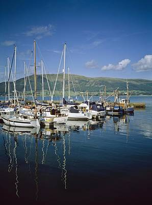 Carlingford Yacht Marina, Co Louth Poster