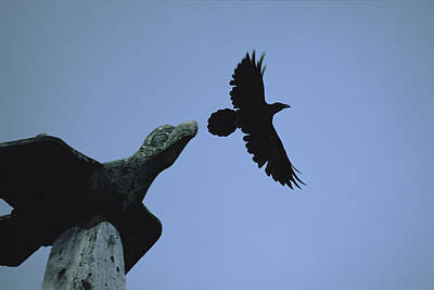 Carved Raven Tops A Totem Pole Poster