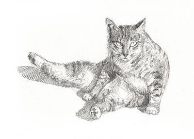 Cat Sitting Poster