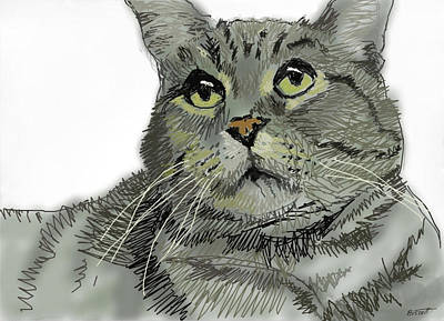 Cat Tabby 2 Poster
