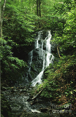Cataract Falls In Smokies Poster