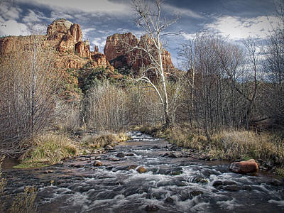 Cathedral Rock In Sedona Poster by Randall Nyhof