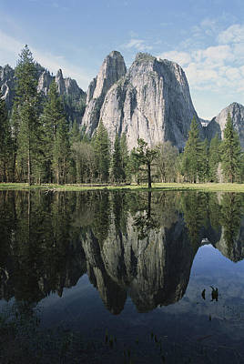 Cathedral Rocks And Reflection Poster