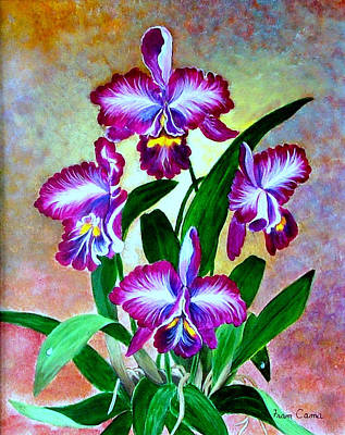 Poster featuring the painting Cattleya Orchid by Fram Cama